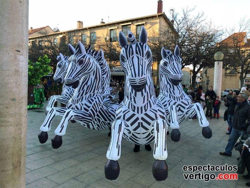 04-Zebras