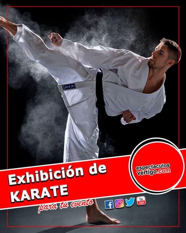 Exhibicion-de-karate