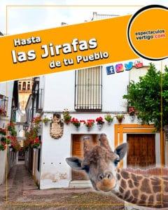 Hasta-las-jirafas-de-tu-pueblo